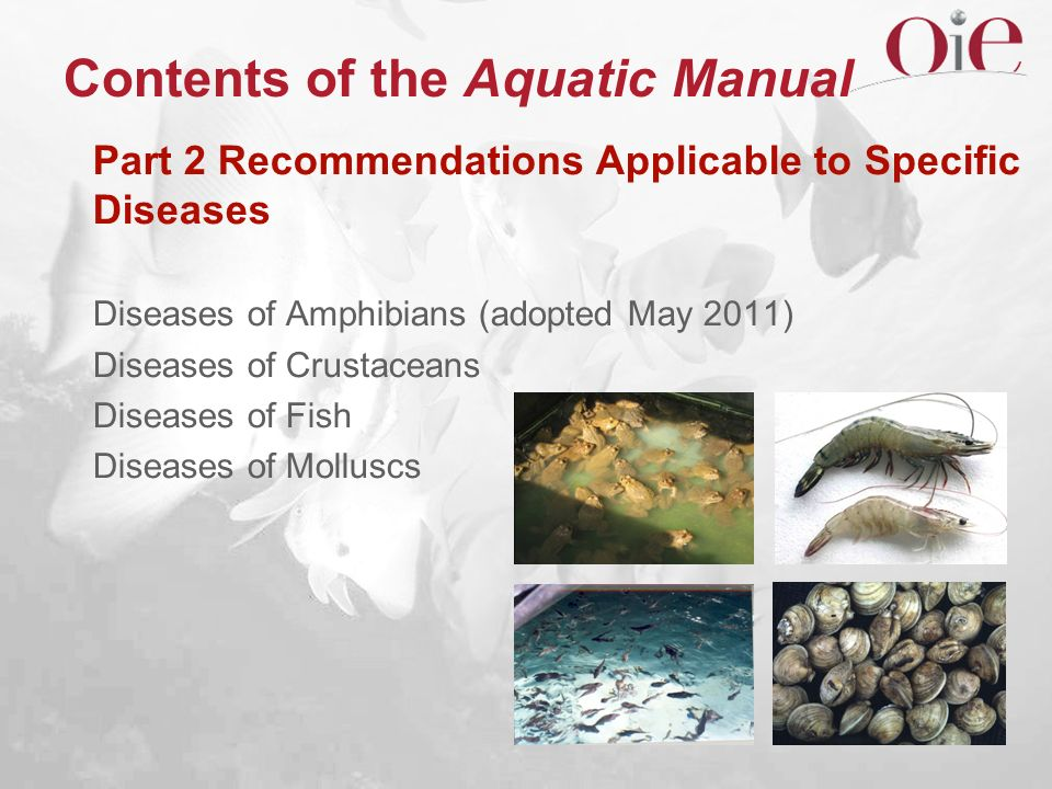 Contents of the Aquatic Manual Part 2 Recommendations Applicable to Specific Diseases Diseases of Amphibians (adopted May 2011) Diseases of Crustacean