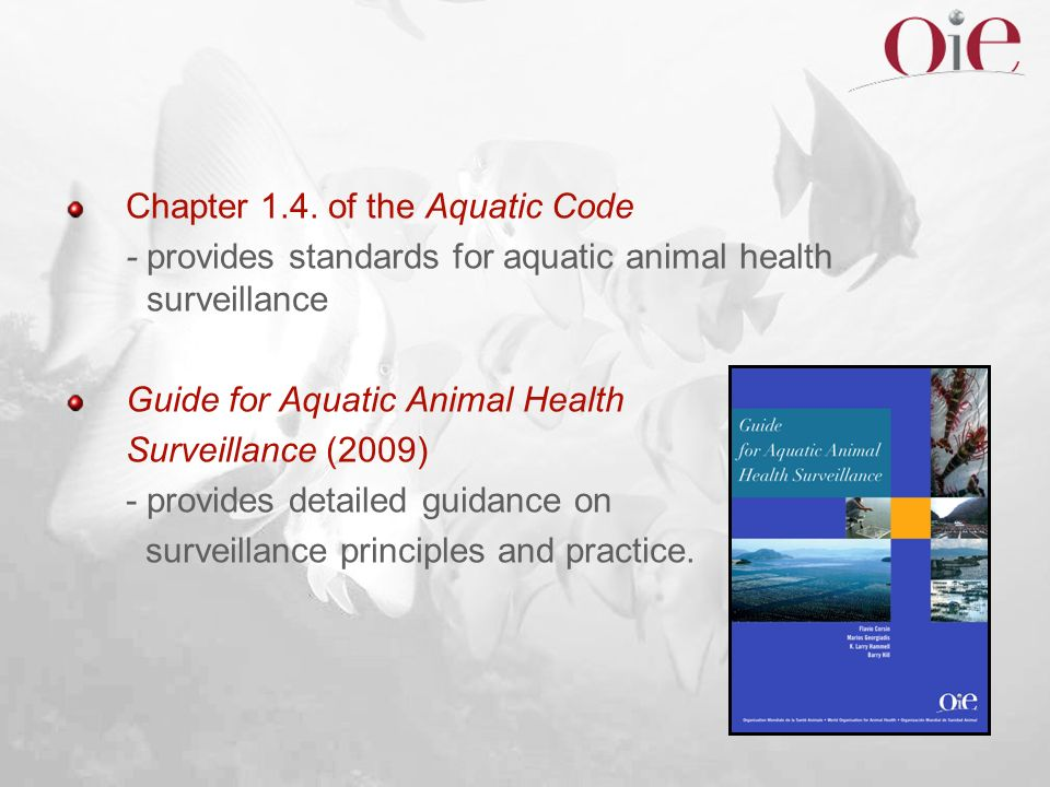 Chapter 1.4. of the Aquatic Code - provides standards for aquatic animal health surveillance Guide for Aquatic Animal Health Surveillance (2009) - pro