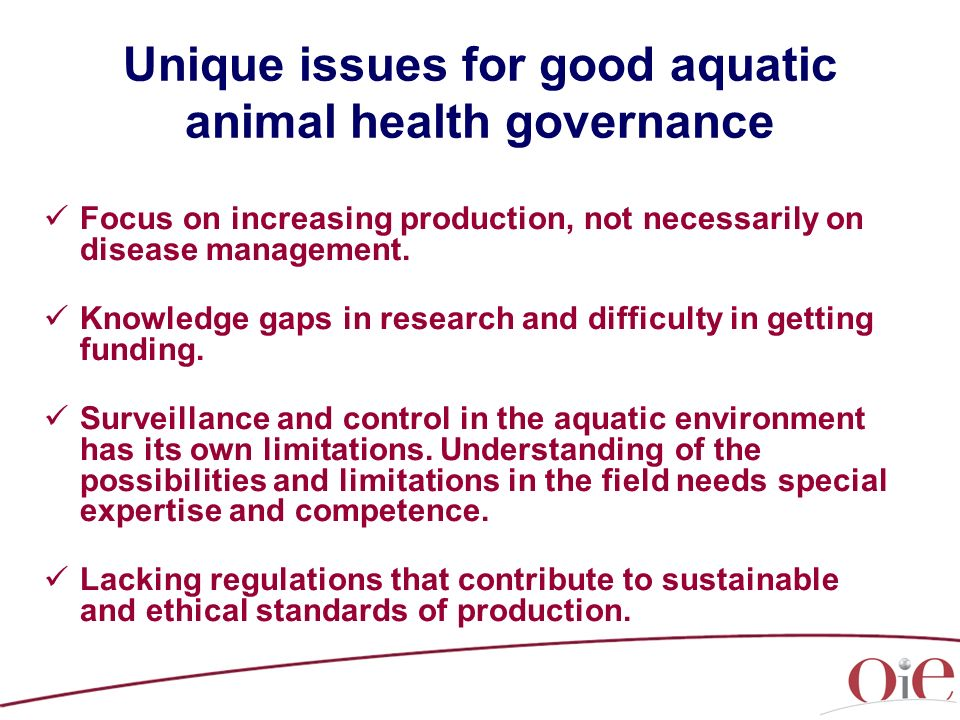 Unique issues for good aquatic animal health governance Focus on increasing production, not necessarily on disease management. Knowledge gaps in resea