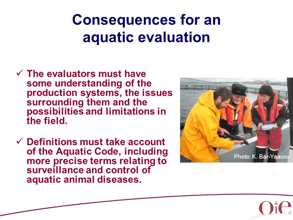 Consequences for an aquatic evaluation The evaluators must have some understanding of the production systems, the issues surrounding them and the poss
