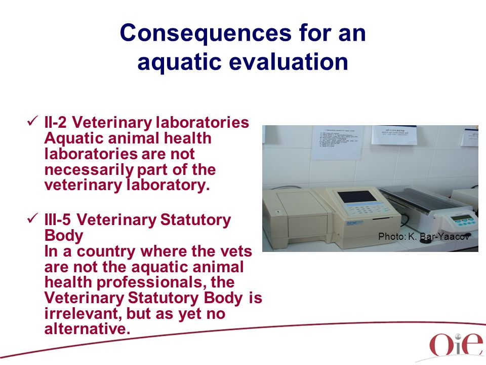 Consequences for an aquatic evaluation II-2 Veterinary laboratories Aquatic animal health laboratories are not necessarily part of the veterinary laboratory.