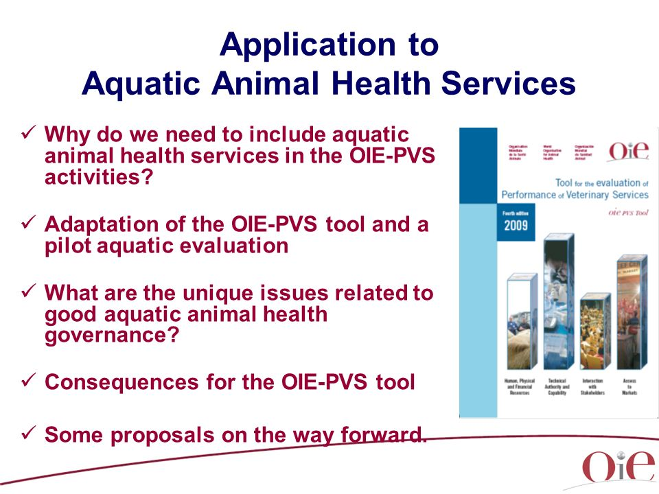 Application to Aquatic Animal Health Services Why do we need to include aquatic animal health services in the OIE-PVS activities.