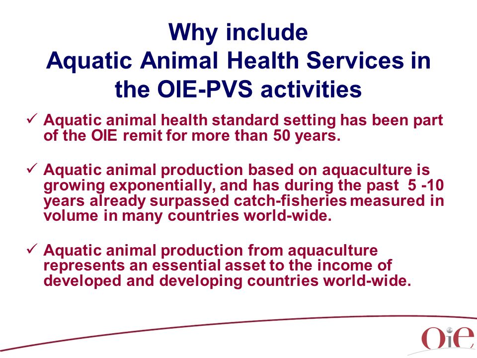 Why include Aquatic Animal Health Services in the OIE-PVS activities Aquatic animal health standard setting has been part of the OIE remit for more than 50 years.