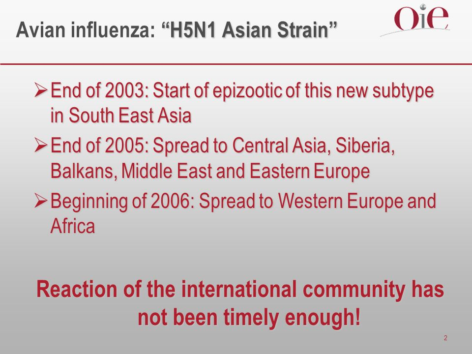 2 H5N1 Asian Strain Avian influenza: H5N1 Asian Strain End of 2003: Start of epizootic of this new subtype in South East Asia End of 2003: Start of epizootic of this new subtype in South East Asia End of 2005: Spread to Central Asia, Siberia, Balkans, Middle East and Eastern Europe End of 2005: Spread to Central Asia, Siberia, Balkans, Middle East and Eastern Europe Beginning of 2006: Spread to Western Europe and Africa Beginning of 2006: Spread to Western Europe and Africa Reaction of the international community has not been timely enough!