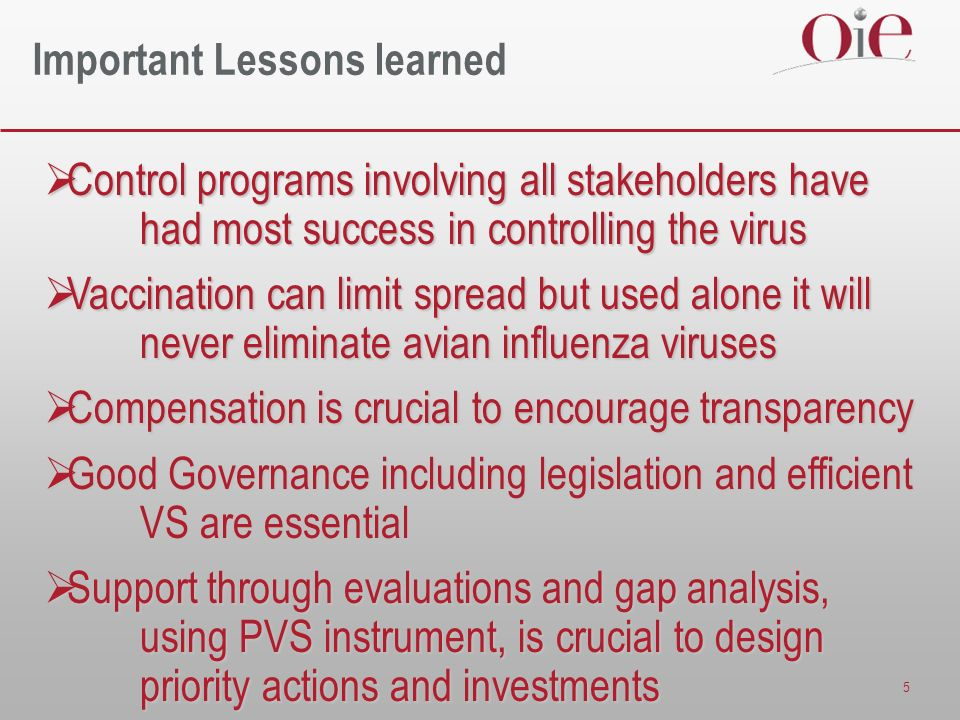 5 Important Lessons learned Control programs involving all stakeholders have had most success in controlling the virus Control programs involving all stakeholders have had most success in controlling the virus Vaccination can limit spread but used alone it will never eliminate avian influenza viruses Vaccination can limit spread but used alone it will never eliminate avian influenza viruses Compensation is crucial to encourage transparency Compensation is crucial to encourage transparency Good Governance including legislation and efficient VS are essential Good Governance including legislation and efficient VS are essential Support through evaluations and gap analysis, using PVS instrument, is crucial to design priority actions and investments Support through evaluations and gap analysis, using PVS instrument, is crucial to design priority actions and investments