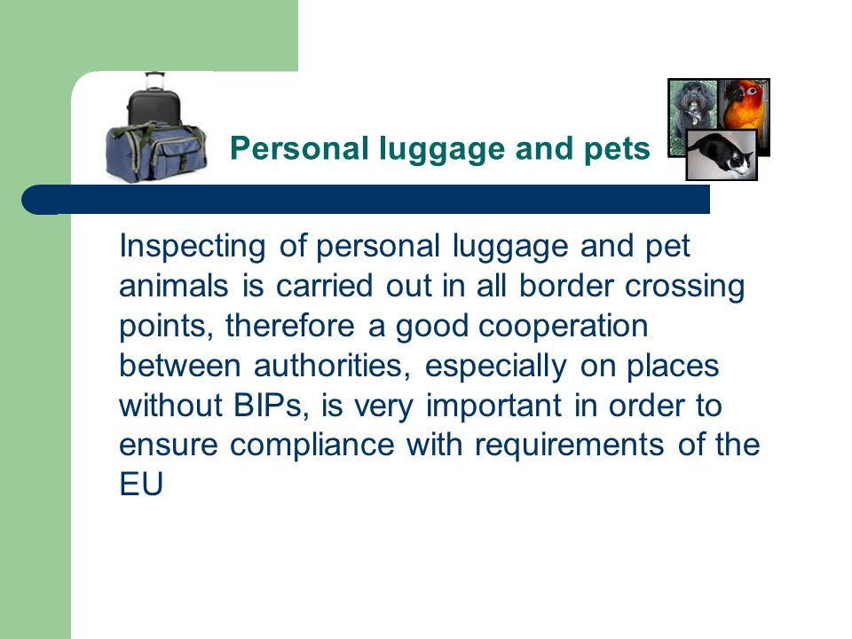 Personal luggage and pets Inspecting of personal luggage and pet animals is carried out in all border crossing points, therefore a good cooperation be