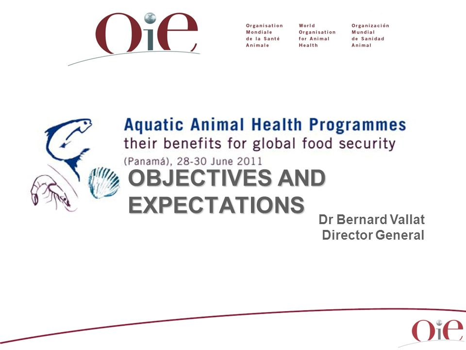 OBJECTIVES AND EXPECTATIONS Dr Bernard Vallat Director General