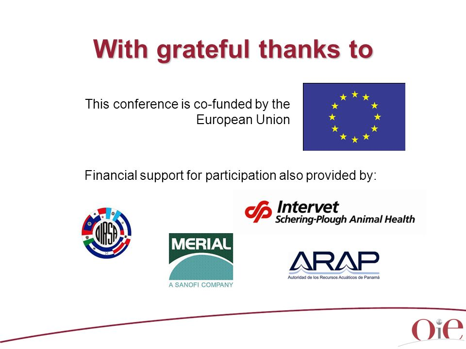 With grateful thanks to This conference is co-funded by the European Union Financial support for participation also provided by: