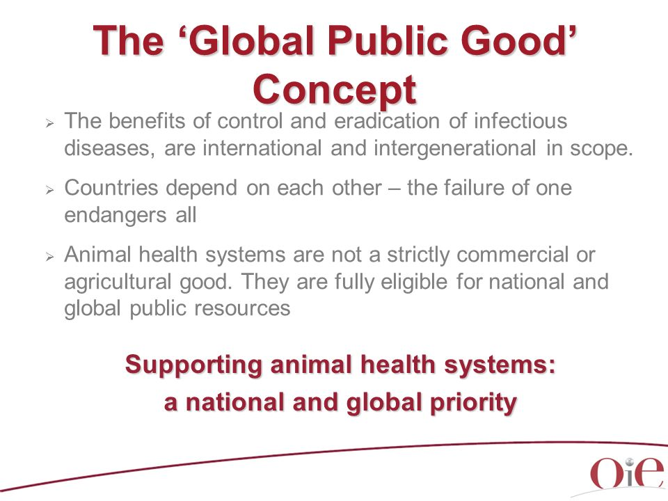 Good Governance: for all countries Competent Authorities need adequate infrastructure (including modern legislation) and resources to support effective implementation of animal health systems in the national territory, notably to address: Disease surveillance, early detection, transparency Rapid response to disease outbreaks Biosecurity measures Compensation Deregulation and lack of sustainable funding for veterinary services and aquatic animal health services can lead to biological disasters