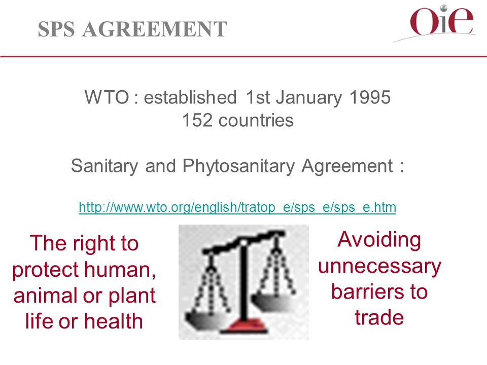 SPS AGREEMENT WTO : established 1st January countries Sanitary and Phytosanitary Agreement :     Avoiding unnecessary barriers to trade The right to protect human, animal or plant life or health