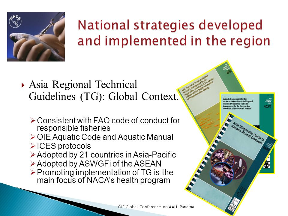 Asia Regional Technical Guidelines (TG): Global Context. Consistent with FAO code of conduct for responsible fisheries OIE Aquatic Code and Aquatic Ma
