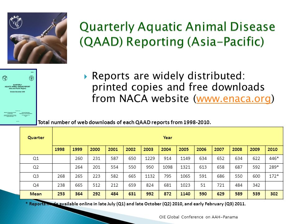 Reports are widely distributed: printed copies and free downloads from NACA website (www.enaca.org)www.enaca.org QuarterYear 1998199920002001200220032