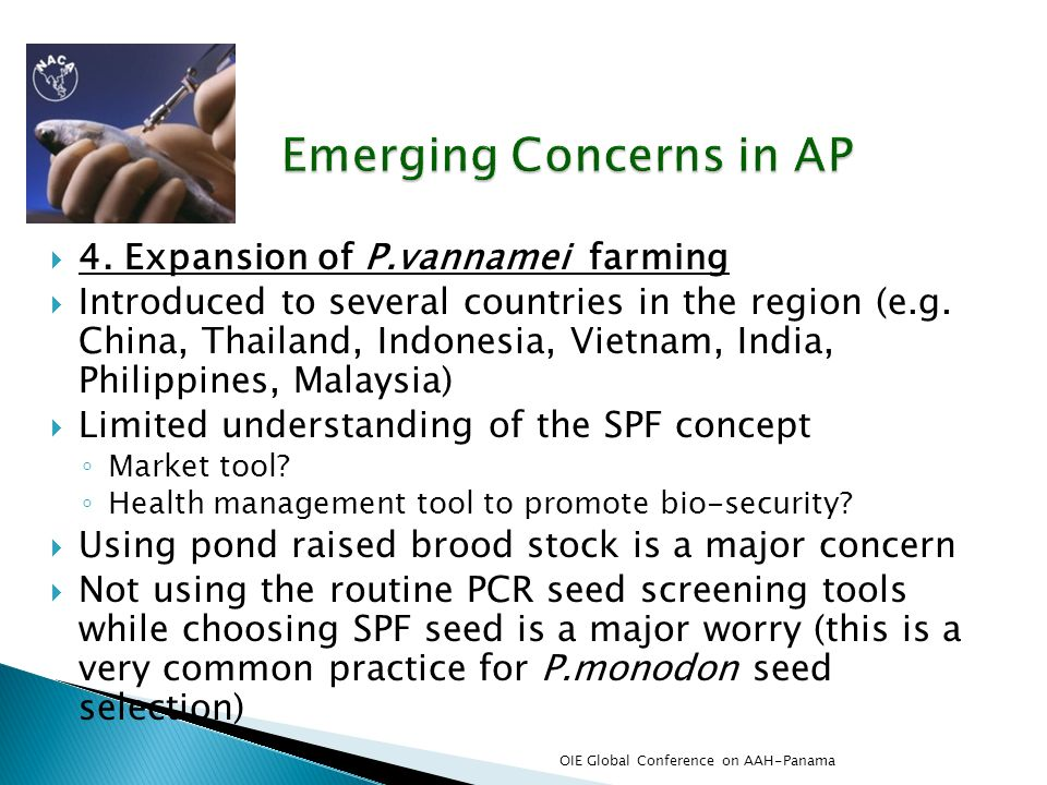 4. Expansion of P.vannamei farming Introduced to several countries in the region (e.g. China, Thailand, Indonesia, Vietnam, India, Philippines, Malays