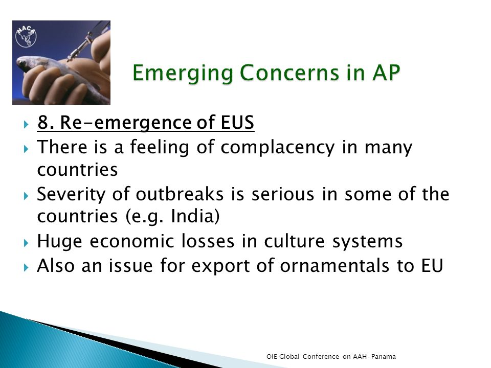 8. Re-emergence of EUS There is a feeling of complacency in many countries Severity of outbreaks is serious in some of the countries (e.g. India) Huge