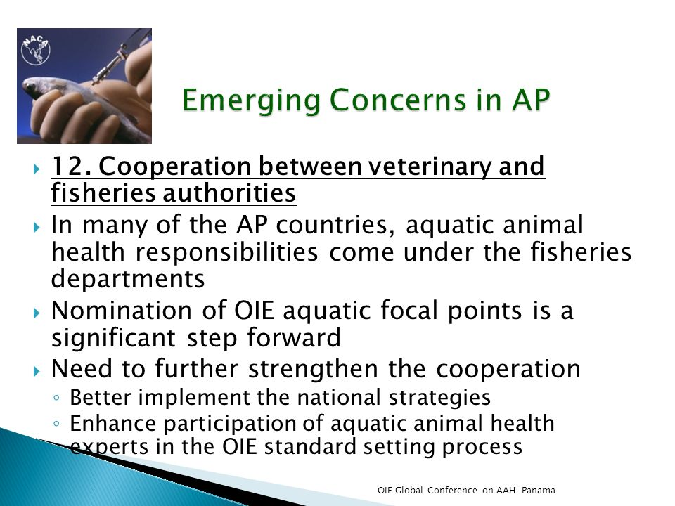 12. Cooperation between veterinary and fisheries authorities In many of the AP countries, aquatic animal health responsibilities come under the fisher