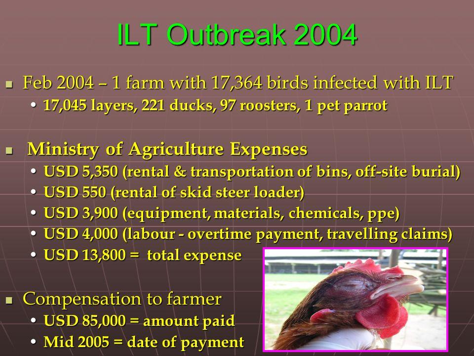 ILT Outbreak 2004 Feb 2004 – 1 farm with 17,364 birds infected with ILT Feb 2004 – 1 farm with 17,364 birds infected with ILT 17,045 layers, 221 ducks
