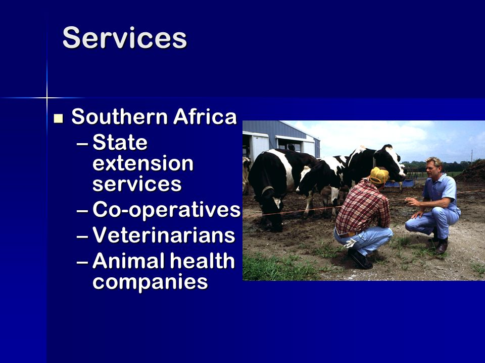 Services Southern Africa Southern Africa –State extension services –Co-operatives –Veterinarians –Animal health companies
