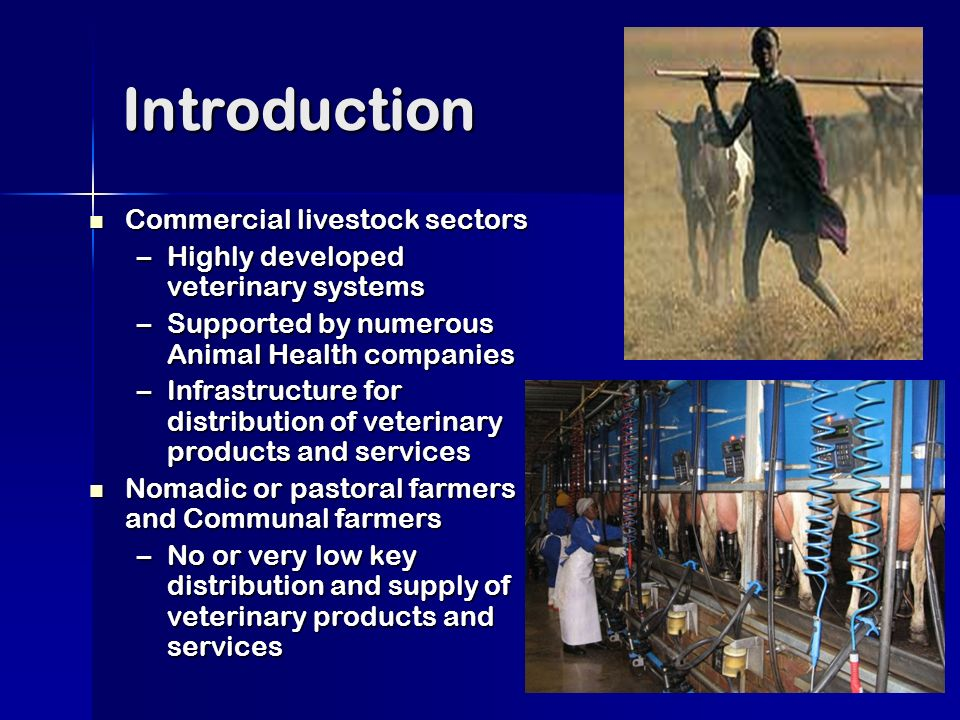 Introduction Commercial livestock sectors Commercial livestock sectors –Highly developed veterinary systems –Supported by numerous Animal Health companies –Infrastructure for distribution of veterinary products and services Nomadic or pastoral farmers and Communal farmers Nomadic or pastoral farmers and Communal farmers –No or very low key distribution and supply of veterinary products and services