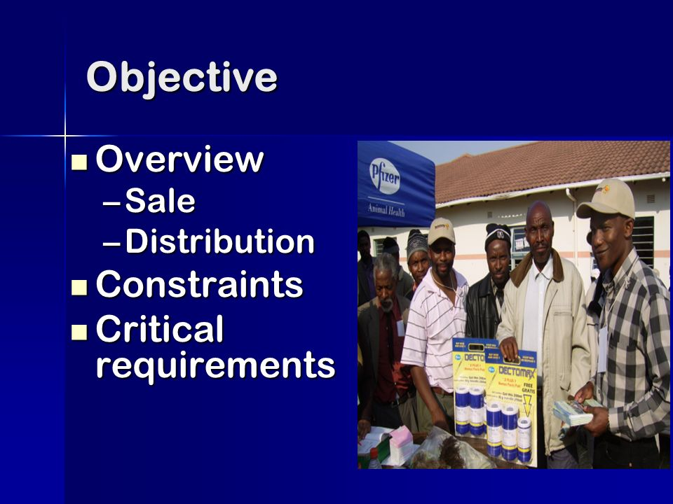 Objective Overview Overview –Sale –Distribution Constraints Constraints Critical requirements Critical requirements