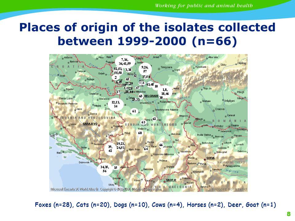 8 Places of origin of the isolates collected between 1999-2000 (n=66) Foxes (n=28), Cats (n=20), Dogs (n=10), Cows (n=4), Horses (n=2), Deer, Goat (n=1)