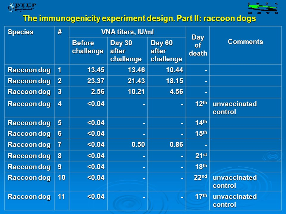 The immunogenicity experiment design. Part II: raccoon dogs Species# VNA titers, IU/ml Day of death Comments Before challenge Day 30 after challenge D