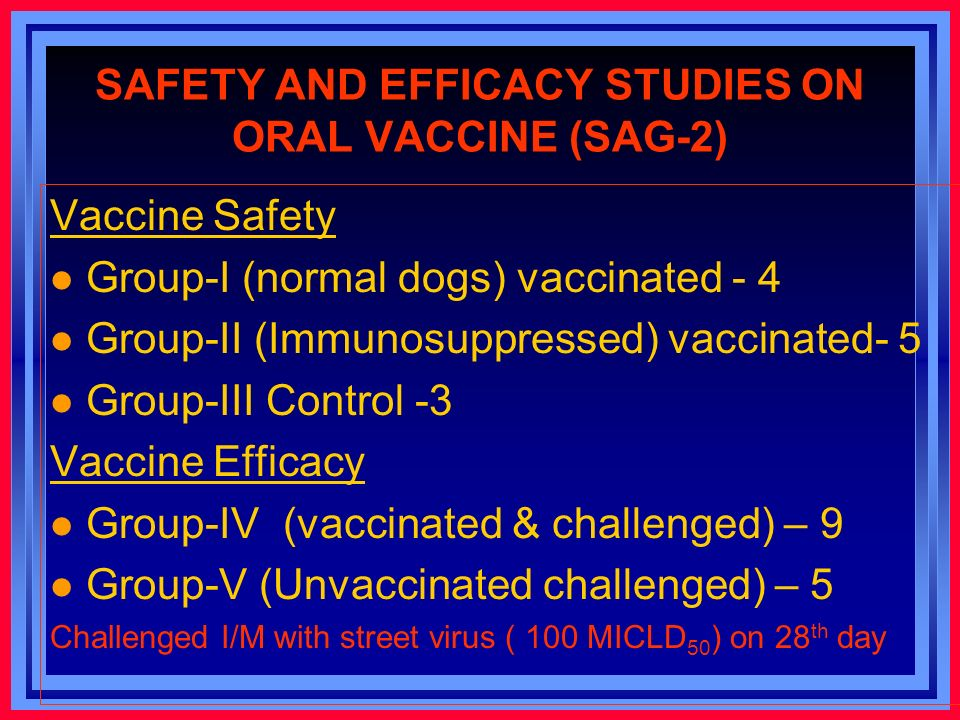 SAFETY AND EFFICACY STUDIES ON ORAL VACCINE (SAG-2) Vaccine Safety l Group-I (normal dogs) vaccinated - 4 l Group-II (Immunosuppressed) vaccinated- 5 l Group-III Control -3 Vaccine Efficacy l Group-IV (vaccinated & challenged) – 9 l Group-V (Unvaccinated challenged) – 5 Challenged I/M with street virus ( 100 MICLD 50 ) on 28 th day