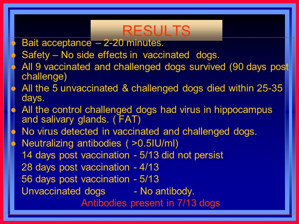 RESULTS l Bait acceptance – 2-20 minutes. l Safety – No side effects in vaccinated dogs.