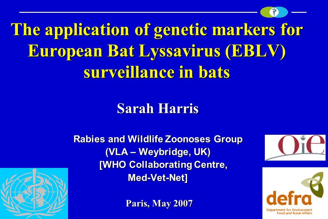 The application of genetic markers for European Bat Lyssavirus (EBLV) surveillance in bats Sarah Harris Rabies and Wildlife Zoonoses Group (VLA – Weyb