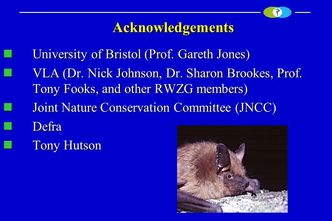 Acknowledgements Acknowledgements University of Bristol (Prof. Gareth Jones) University of Bristol (Prof. Gareth Jones) VLA (Dr. Nick Johnson, Dr. Sha