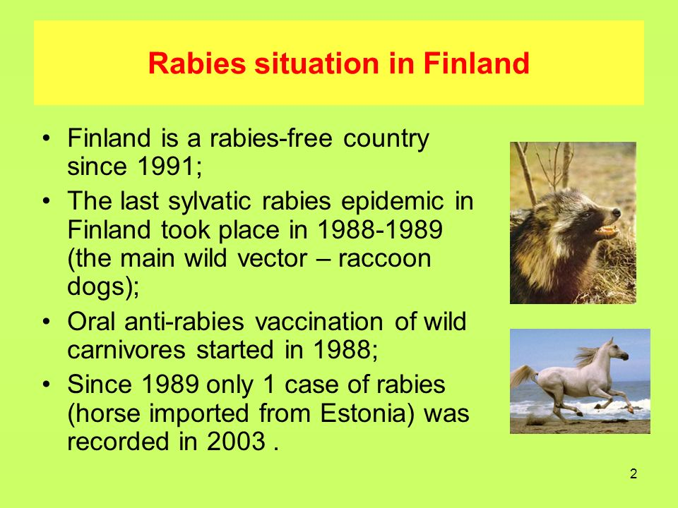 3 Rabies situation in Russia Russia is endemic for rabies for a long time; Rabies cases in wild, domestic and farm animals are recorded every year; A few rabies cases in humans are recorded annually; Oral anti-rabies vaccination is conducted in a few regions non- systematically.