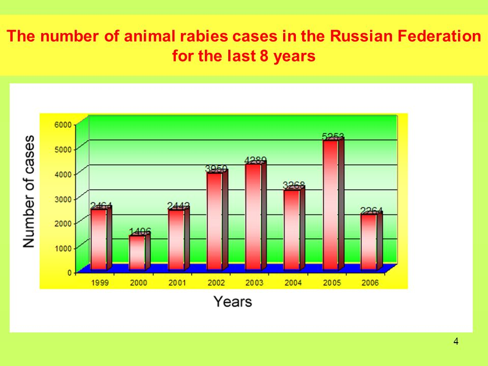 5 Number of animal rabies cases in the Russian Federation in 2006