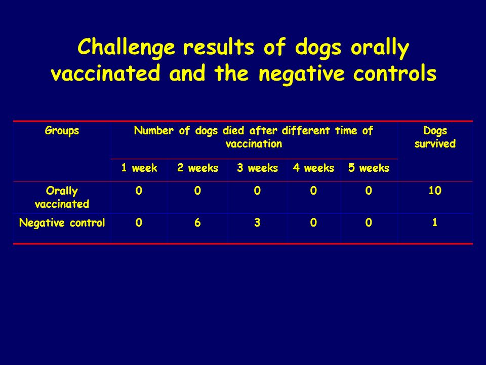 Challenge results of dogs orally vaccinated and the negative controls GroupsNumber of dogs died after different time of vaccination Dogs survived 1 we