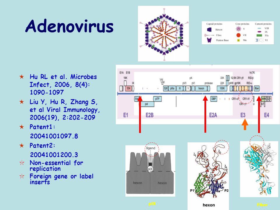 Hu RL et al. Microbes Infect, 2006, 8(4): 1090-1097 Liu Y, Hu R, Zhang S, et al Viral Immunology, 2006(19), 2:202-209 Patent1: 20041001097.8 Patent2: