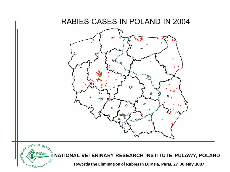 NATIONAL VETERINARY RESEARCH INSTITUTE, PULAWY, POLAND Towards the Elimination of Rabies in Eurasia, Paris, 27-30 May 2007 RABIES CASES IN POLAND IN 2004