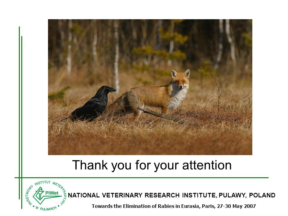 NATIONAL VETERINARY RESEARCH INSTITUTE, PULAWY, POLAND Towards the Elimination of Rabies in Eurasia, Paris, 27-30 May 2007 Thank you for your attention