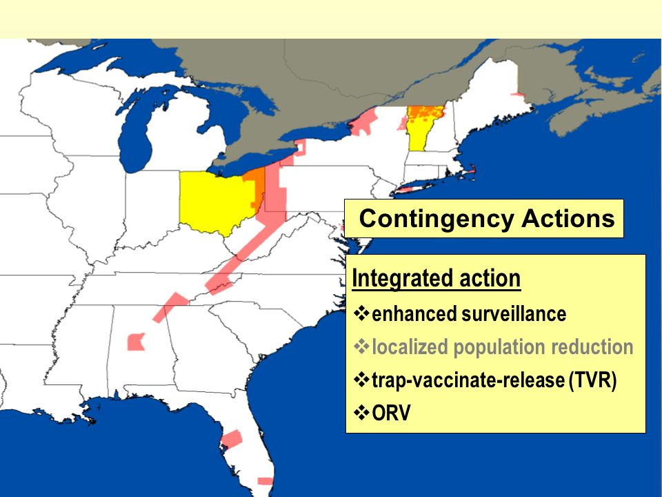 Contingency Actions Integrated action enhanced surveillance localized population reduction trap-vaccinate-release (TVR) ORV
