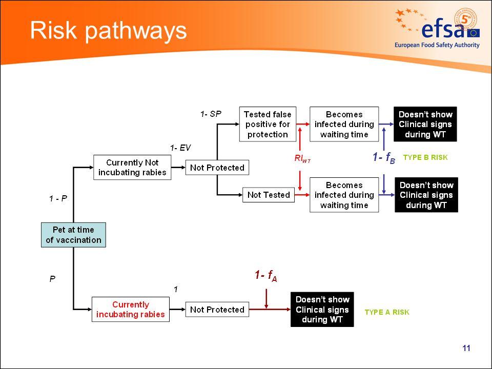 11 Risk pathways