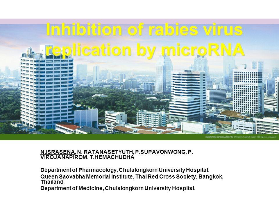 Inhibition of rabies virus replication by microRNA N.ISRASENA, N. RATANASETYUTH, P.SUPAVONWONG, P. VIROJANAPIROM, T.HEMACHUDHA Department of Pharmacol