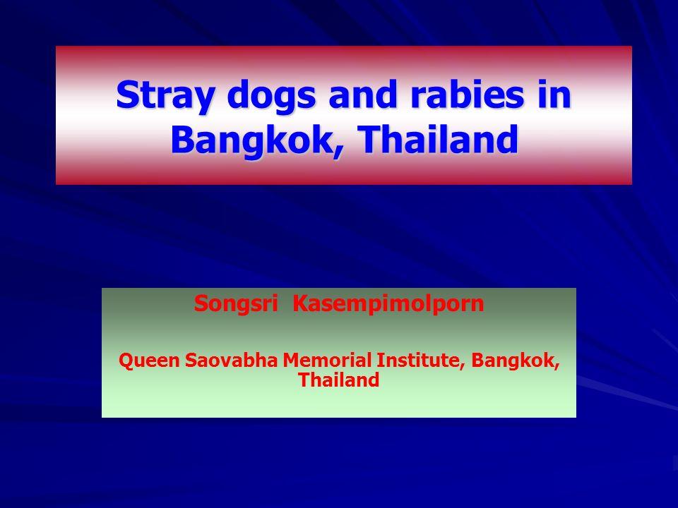 Songsri Kasempimolporn Queen Saovabha Memorial Institute, Bangkok, Thailand Stray dogs and rabies in Bangkok, Thailand