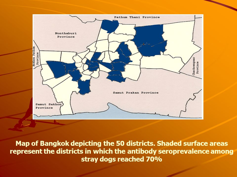 Map of Bangkok depicting the 50 districts. Shaded surface areas represent the districts in which the antibody seroprevalence among stray dogs reached