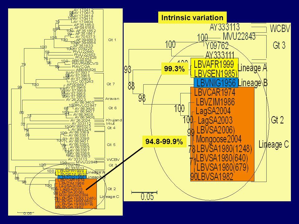 94.8-99.9% 99.3% Intrinsic variation