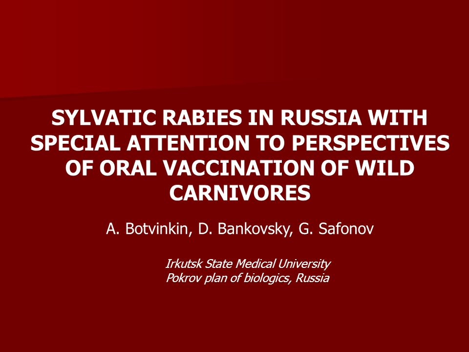 Oral rabies vaccination in Russia in 1998 -2000: Lysvulpen & Sinrab (25-29 regions each year) (Avilov et al., 2002; Kuzmin et al.,2002)
