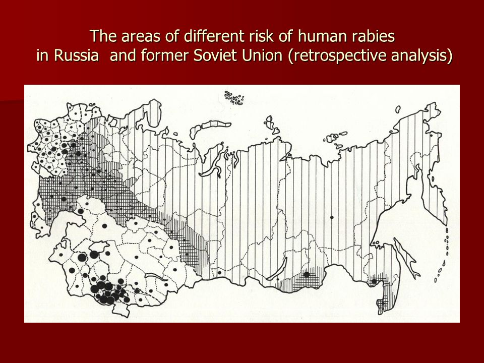 The areas of different risk of human rabies in Russia and former Soviet Union (retrospective analysis)