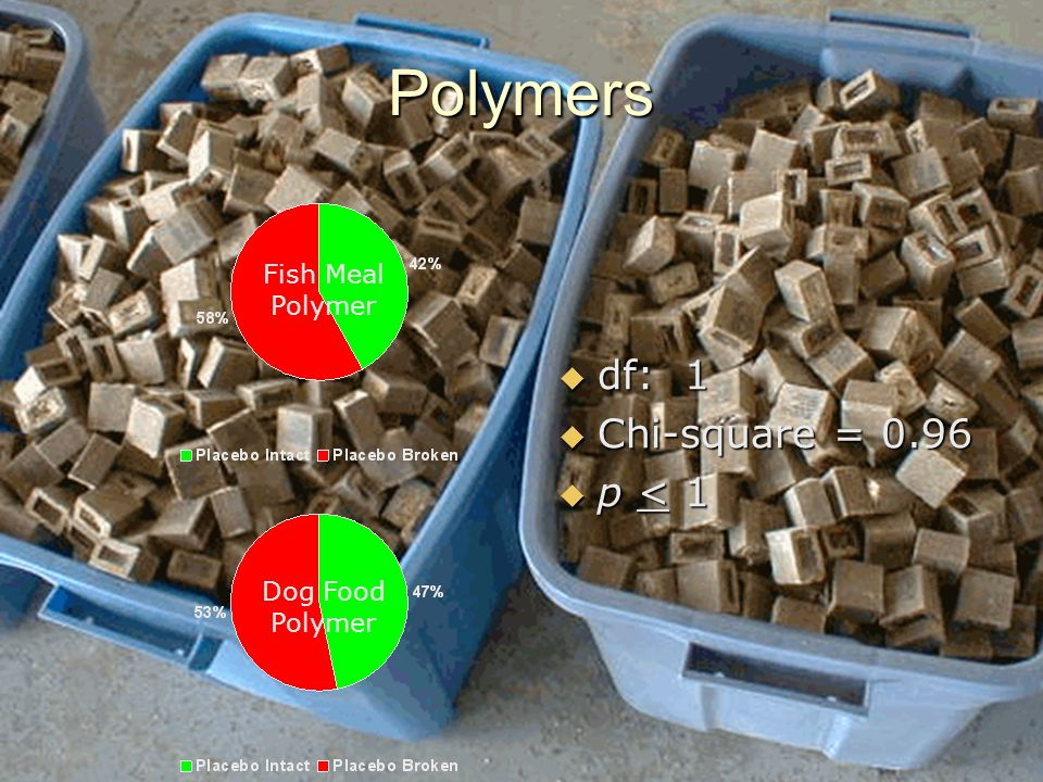 Polymers df: 1 df: 1 Chi-square = 0.96 Chi-square = 0.96 p < 1 p < 1 Fish Meal Polymer Dog Food Polymer