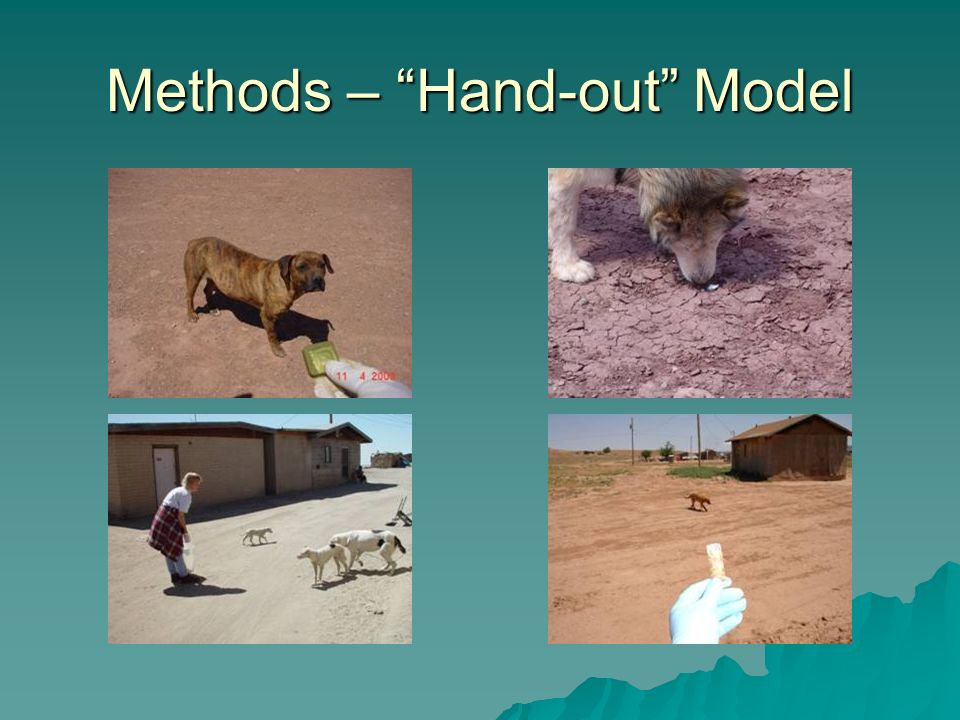 Methods – Hand-out Model
