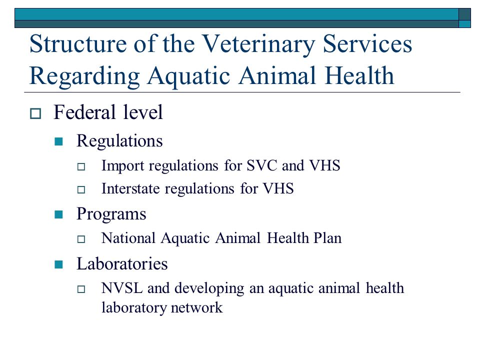 Structure of the Veterinary Services Regarding Aquatic Animal Health Federal level Regulations Import regulations for SVC and VHS Interstate regulations for VHS Programs National Aquatic Animal Health Plan Laboratories NVSL and developing an aquatic animal health laboratory network