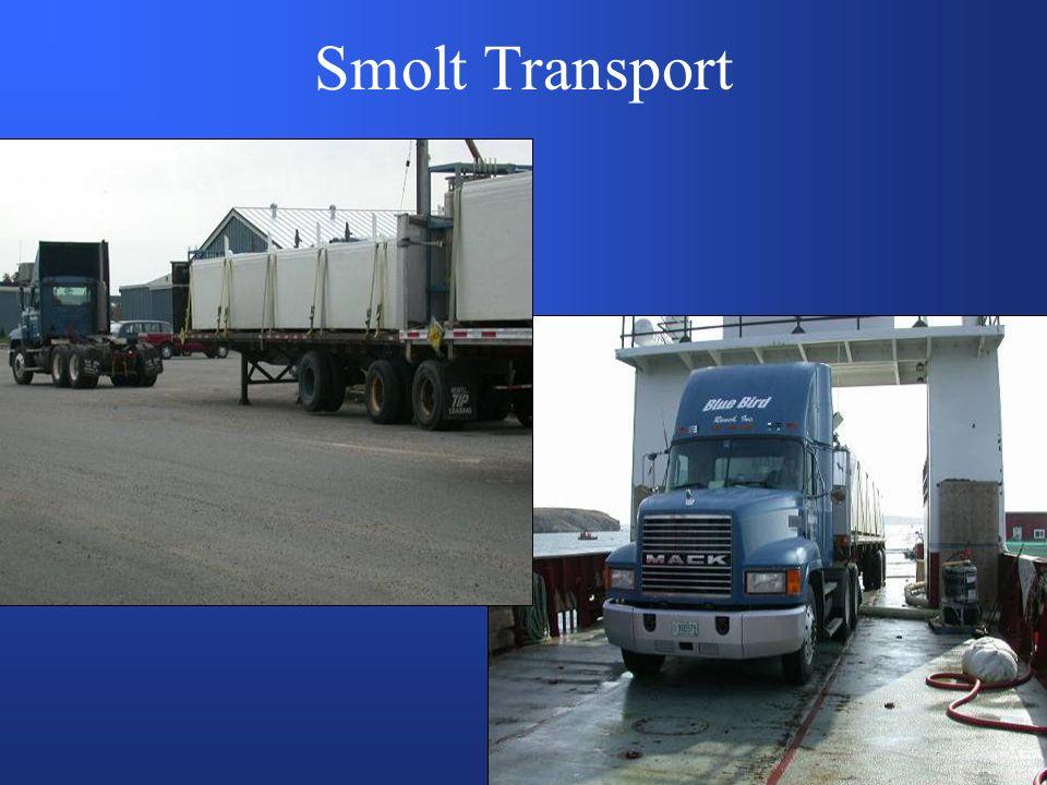 Smolt Transport