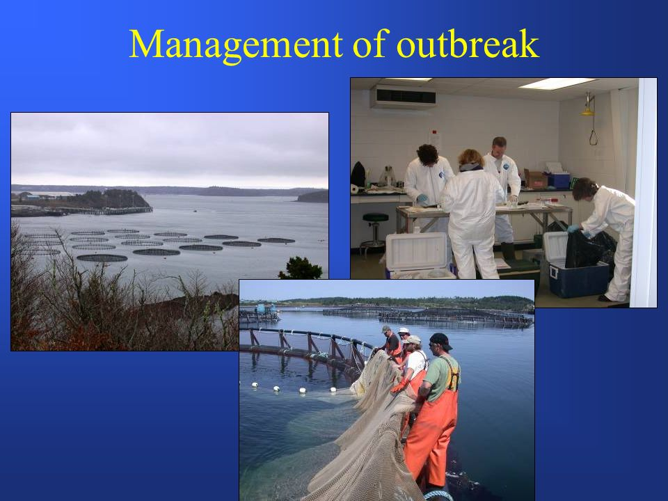 Management of outbreak