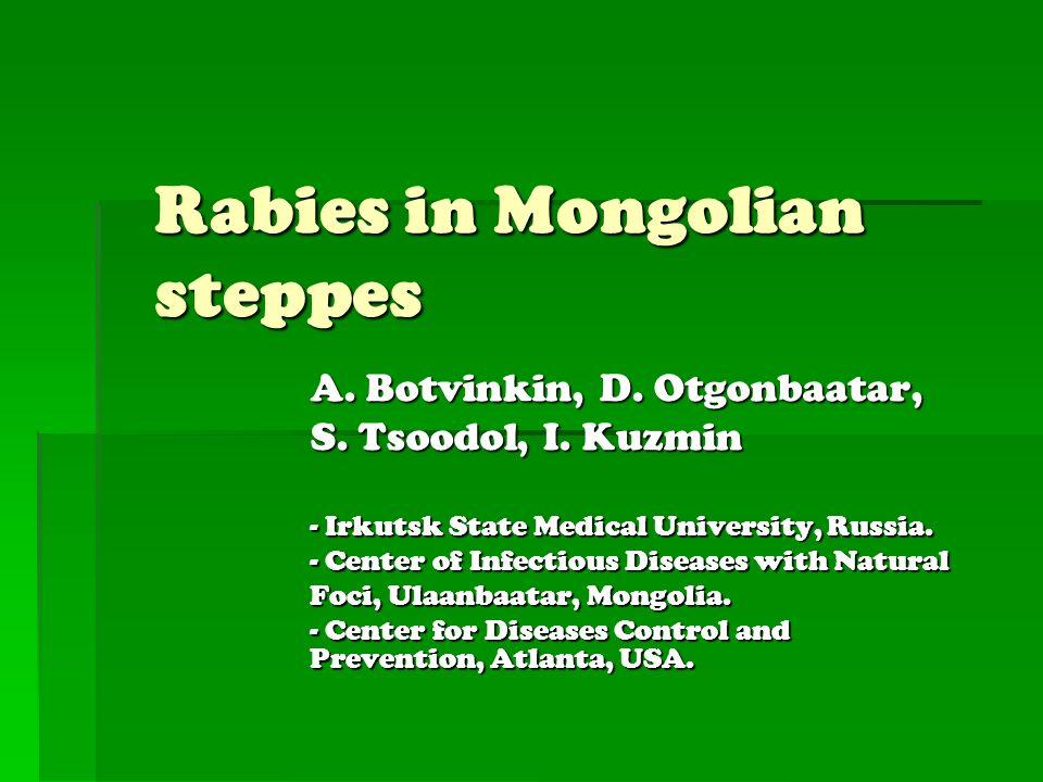 Rabies in Mongolian steppes A. Botvinkin, D. Otgonbaatar, S. Tsoodol, I. Kuzmin - Irkutsk State Medical University, Russia. - Center of Infectious Dis