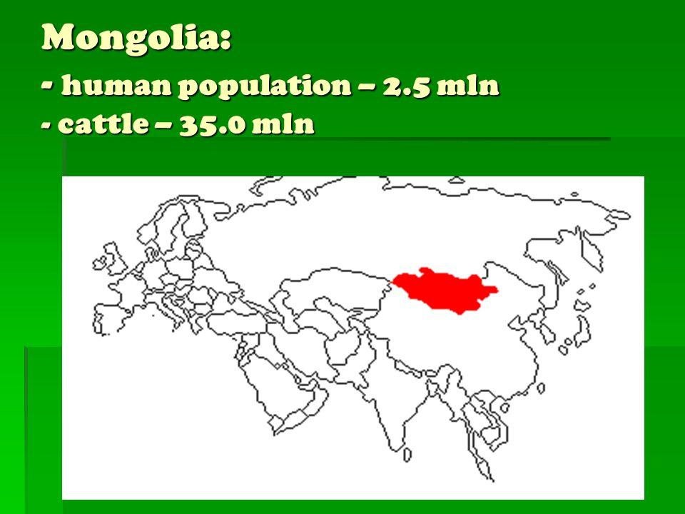 Mongolia: - human population – 2.5 mln - cattle – 35.0 mln